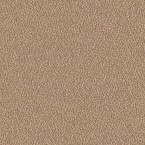 Event Stylish Camel Fabric