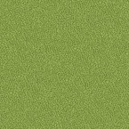 Gaja Paris Green Fabric